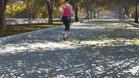 Young woman jogging in the park. Rear view