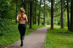 Young woman jogging in the park. Young slim woman jogging in a park stock image