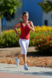 Young woman jogging in the park in summer Royalty Free Stock Photo