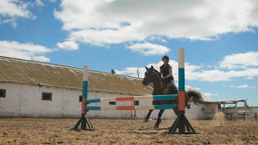 Young woman jumps horse over an obstacle during her training in an arena. Young woman jumps horse over an obstacle during an event in an arena. Sport. Aims stock footage