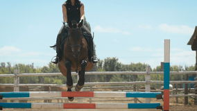 Young woman jumps horse over an obstacle during her training in an arena. Young woman jumps horse over an obstacle during an event in an arena. Sport. Aims stock video footage