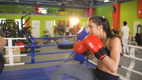 Young woman kickboxer training pre-match warm-up in the boxing ring with her trainer. Young woman boxer training pre-match warm-up in the boxing ring with her stock footage