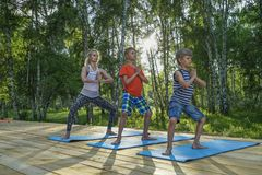 Young woman and kids performing yoga Stock Image