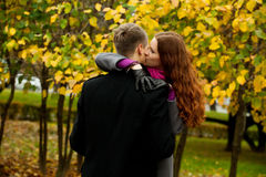 Young woman kissing boyfriend Stock Photos