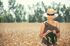 Young  woman knitting on the wheat field Royalty Free Stock Photo