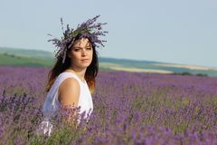 Young woman in lavender field Royalty Free Stock Photo