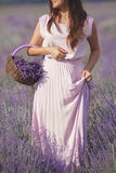Young woman in lavender field Royalty Free Stock Images