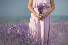 Young woman in lavender field Stock Images