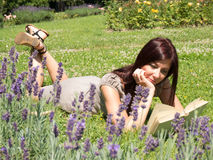 Young woman in lavender fields. Young red woman reading a book lying on the green grass Stock Image