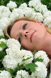 Young woman laying in flowers - snowballs Royalty Free Stock Photos