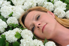 Young woman laying in flowers - snowballs Stock Photos