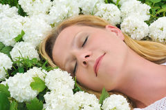 Young Woman Laying In Flowers Stock Photography