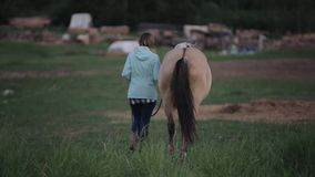 A young woman leads a horse outdoors. Back view. Blurred background stock footage