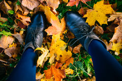 Young woman legs in boots on colorful leaves Royalty Free Stock Photos