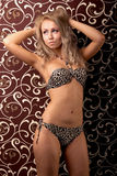 Young woman in a leopard print swimsuit Royalty Free Stock Photos
