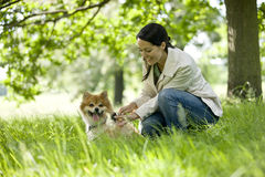 A young woman letting her dog off its lead Stock Photography