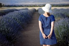 Young woman at levander field Royalty Free Stock Photography