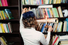A young woman in the library Royalty Free Stock Photo