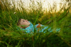 Young woman lie in the high grass. Pretty young woman lie in the high grass on the meadow Stock Image