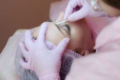 A young woman lies and gets a make-up of her eyebrows in a beauty salon. The use of permanent makeup on the eyebrows. The master w Stock Photos