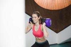 Young woman lifting weight in the gym. Pretty young woman lifting weight in the gym Royalty Free Stock Image