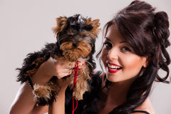 Young Woman With A Little Dog Stock Photo