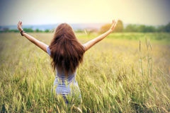 Young woman with long brown hair standing in wheat field raising. Hands. Unity with nature concept. Vintage soft light effect Royalty Free Stock Image