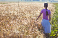 Young woman with long brown hair standing in wheat field. Unity. Young woman with long brown hair standing  wheat field. Unity with nature concept Royalty Free Stock Images