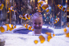 Young woman looking at fish in a circular tank Royalty Free Stock Images