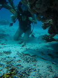 Young woman looking on a small slope while diving with scuba. Young woman on the seafloor looking on a small slope while diving with scuba royalty free stock photo