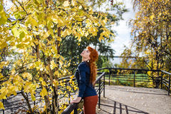 Young woman looking to yellow leaves in autumnal park. Fashion nature beauty concept. Stock Images