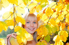Young woman looks through autumn leaves. Beautiful young blond woman looks through autumn leaves royalty free stock photos