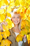 Young woman looks through autumn leaves. Beautiful young blond woman looks through autumn leaves stock photo