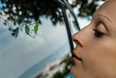 A young woman looks at a green grosshopper sitting on the side window of a car. The insect with long antennae seems watching at its reflection Royalty Free Stock Photos