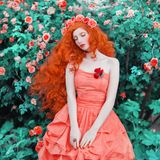 Young woman looks like a doll with very long hair in pink dress on rose background. Girl with pale skin and red lips. Renaissance royalty free stock photography