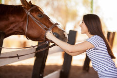 Young woman loving her horse Stock Photos