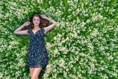 Young woman lying down in white flowers. royalty free stock photo