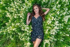 Young woman lying down in white lavender flowers. Young woman outdoors lying down in white lavender flowers. Female model posing in natural white field. Girl in stock image