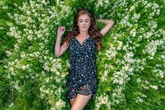 Young woman lying down on white wildflowers royalty free stock photos