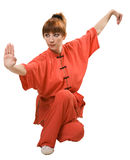 Young woman makes kung-fu exercise Royalty Free Stock Photo