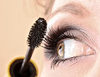 Young woman makeup with mascara Stock Photography