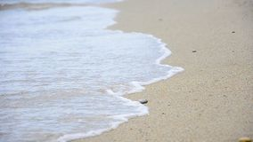 Young Woman making Footprints at the Beach sand stock footage