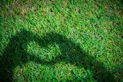 Young woman making love heart shadow symbol by hands over grass. royalty free stock images