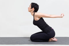 Young woman making yoga Stock Photography