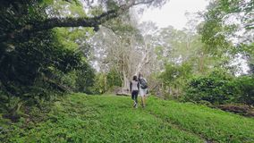 Young woman and man with backpack walking on footpath in rainforest. Tourist couple walking in green jungle forest. Eco stock video footage