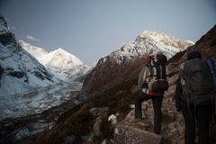 Young woman and man with backpacks walking to the pass on Manaslu circuit with view of Mount Manaslu range 8 156 meters. Trekkers. In Himalayas, Manaslu Glacier stock photos