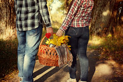 Young woman and man holding a basket with  blanket, yellow leaves  coffee, close-up. Young woman and man holding a basket with a blanket, yellow leaves and Stock Photography