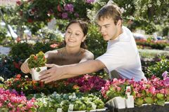 Young Woman With Man Selecting Plant Royalty Free Stock Photo
