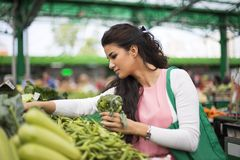 Young woman on the market Stock Photography