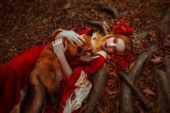 Woman in medieval clothes with a fox. A young woman in medieval red dress with a fox royalty free stock image